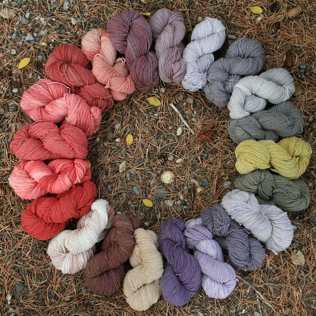 beautiful naturally-dyed Clover (swoon)